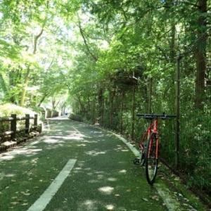 夏のサイクリング(多摩湖&狭山湖)