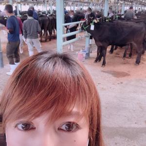 子牛の競り1日目からのお知らせ FMはな北田恵美のほほえみラジオ