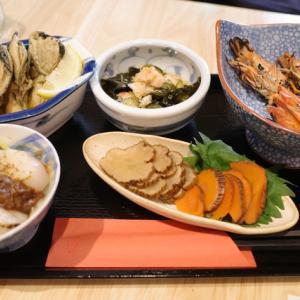 【渋谷】日本酒好き必見。カジュアルにお酒と相性ばっちりのアテがリーズナブルに楽しめる酒場を発見「醸音屋 (カモネヤ)」