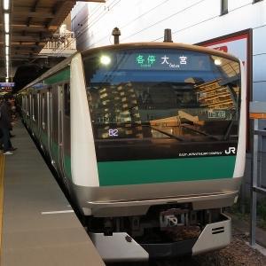 JR東日本E233系7000番台 相鉄本線各停(緑)大宮行き