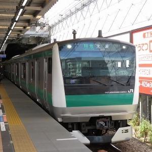 JR東日本E233系7000番台 相鉄本線特急大崎行き
