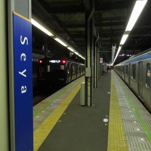 相鉄本線瀬谷駅1番線