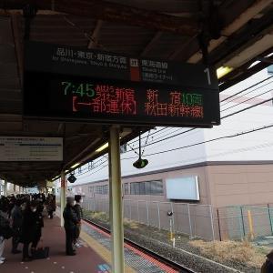 JR東日本215系 東海道本線「おはようライナー新宿」新宿行き