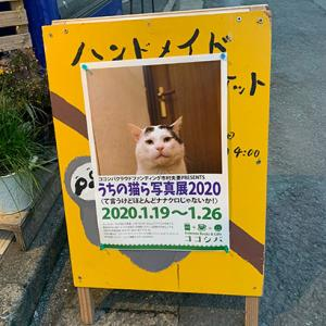 うちの猫ら写真展2020