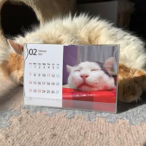 ナナクロカレンダー