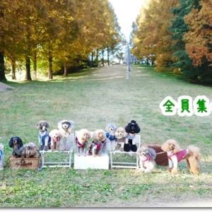 昭和記念公園にこんなところあったんだ!?