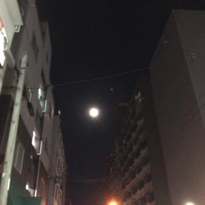 月見れました。