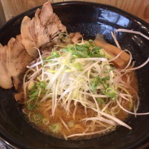 味噌麺処 豆醤