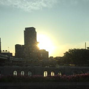 今日、大阪いい天気