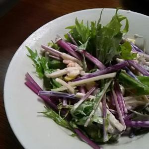 赤水菜・紫色がそそる(笑)