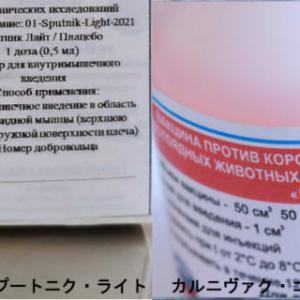 新型コロナ・インフルエンザとの闘いー4 in ロシア