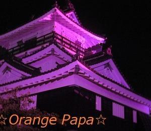 浜松城公園のライトアップ♪