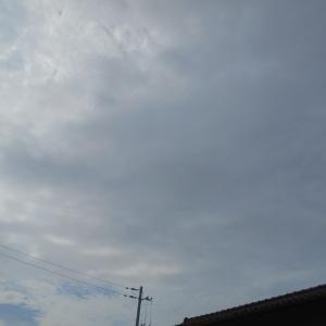 マイタウン芳泉(曇り・雨)