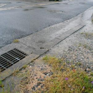 マイタウン芳泉(大雨・洪水警報)