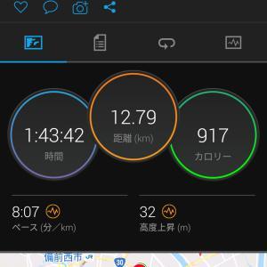 今日のジョギング(12km・汗びっしょり)