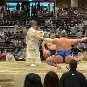 大相撲5月場所観戦
