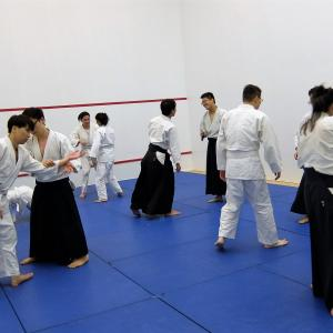 Aikikai Yubukan Saturday - 2 sessions -