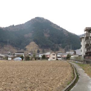 鶴首城(岡山県高梁市)