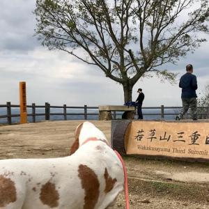 ハルくん奈良に行く その1 若草山