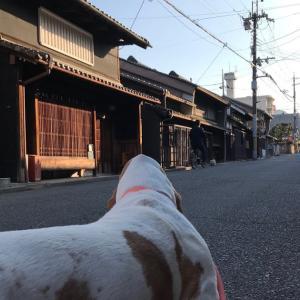 ハルくん奈良に行く その4 民泊、興福寺
