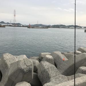 2019.05.18 妻鹿1番 キス