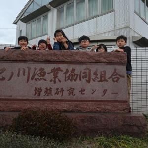 紀の川漁協へ見学