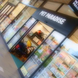 軽井沢アウトレットでお買い物♪