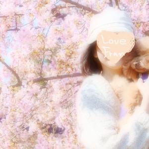 満開の河津桜と私とFranさん♪