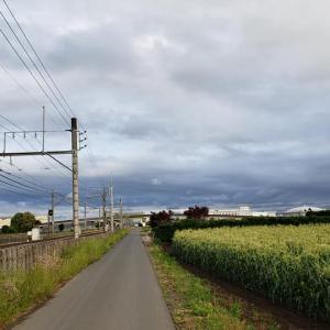 雨上がりの空と見慣れない電車!