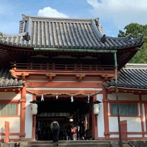奈良にいます