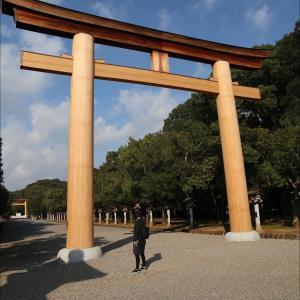 奈良から帰ってきました。