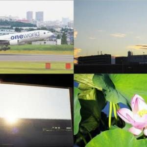 昨夕,今朝の風景 大阪伊丹空港,日の出