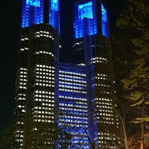 都庁と夜桜