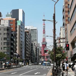 ひまわりと東京タワー