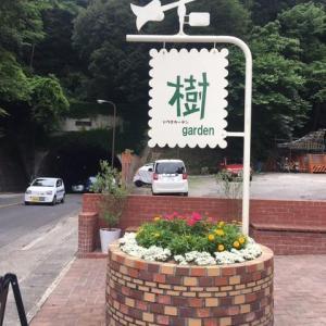 鎌倉 樹ガーデン~銭洗弁天~佐助稲荷神社~桜木町コース