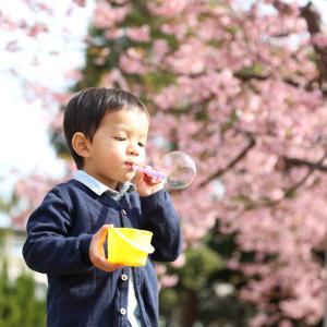 【学び】河津桜が咲いていました!フォトレッスン