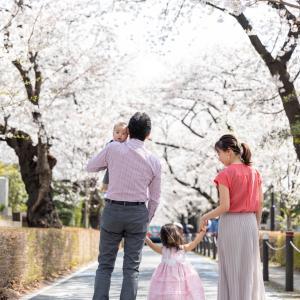 【春撮影2021】感動!鳥肌!圧巻の桜ファミリーフォト