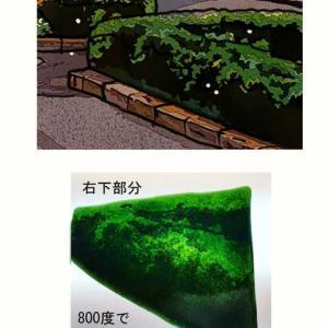 植栽の表現