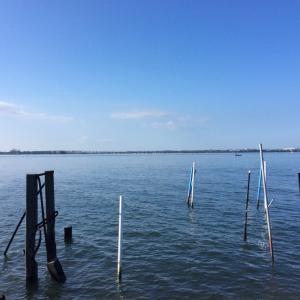 村櫛海岸。