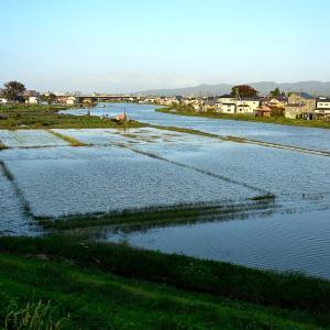 各地で河川が氾濫(新潟県)
