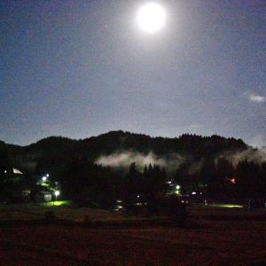 未明の月明かり