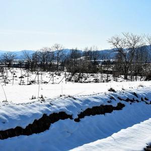 八海山の麓で「ごみ処理問題」(新潟県魚沼地区)