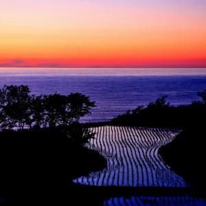 日本海を望む「棚田」