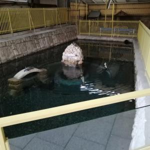 阪神御影駅の近くの「沢の井」を訪れてみた