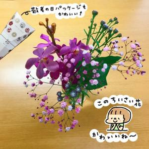 【Bloomee LIFE】ポストにお花が届く新体験!今週のお花
