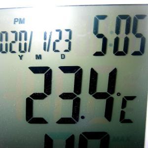 めちゃ暖かい一日