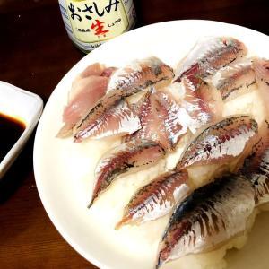 若者友人、前回アジングの獲物でお寿司