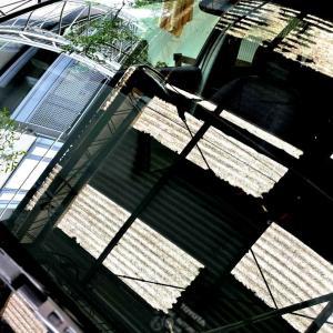 若者友人 愛車のフロントガラスをバチバチに磨く