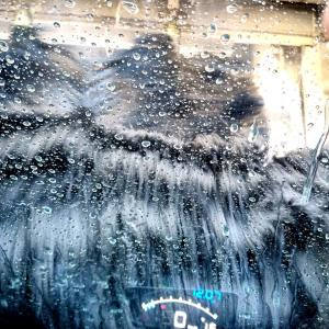 久し振りに洗車機に入ってきました