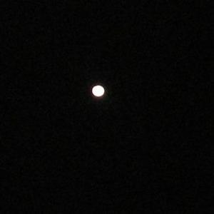 一日遅れましたが綺麗な月、見れました